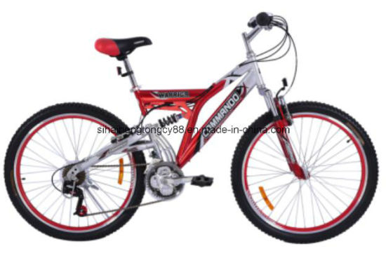 China Hot 26 Size Mountain Bike/Bicycle with Suspension - China ...