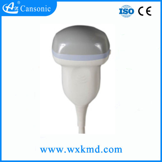 4D Volume Ultrasound Scanner Probe pictures & photos