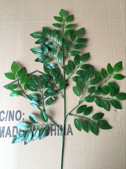 High Quality of Artificial Chinese Scholartree Leaves Gu828191822 pictures & photos