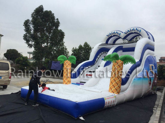 Amazing Moana Inflatable Slide with Pool on Sale pictures & photos