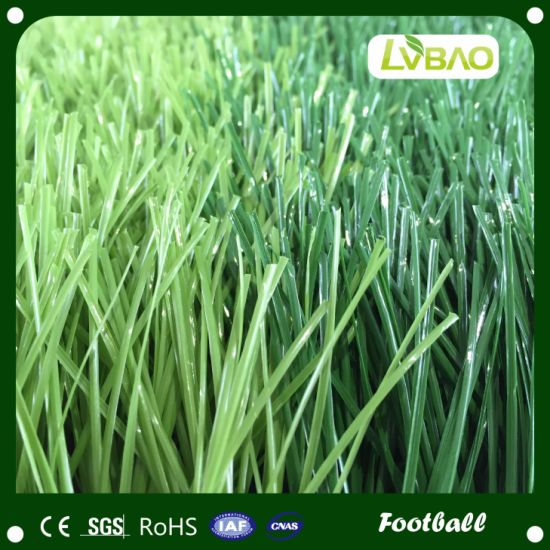 Sporting Artificial Grass Roll pictures & photos