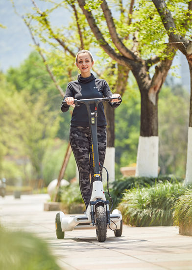 2020year/New Style/Electric Fitness Scooter/250W E Scooter