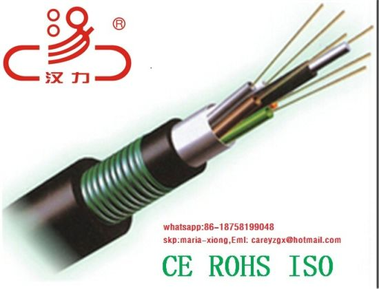 GYTA Optical Fiber Cable/Computer Cable/ Data Cable/ Communication Cable/ Connector/Cable pictures & photos