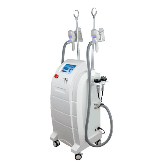 Slimming Machine Fat Freezing Machine Coolsculpting Machine Physical Therapy