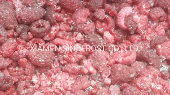 Frozen Raspberry Wholes & Brokens, IQF Raspberry Wholes & Brokens, IQF Rasberries Wholes & Brokens, Frozen Raspberries Wholes & Brokens, IQF Raspberry Crumbles