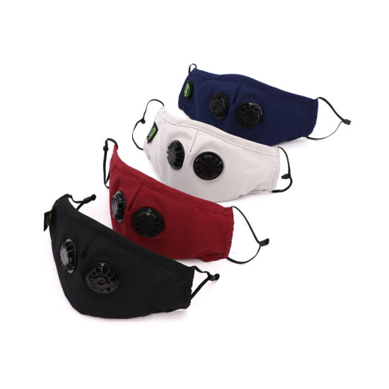 Pm2.5 Organic Cotton Printed Mouth Mask Custom Logo Printed Adjustable Earloop Face Mask for Mouth Anti-Dust Mask Dust Face Mask