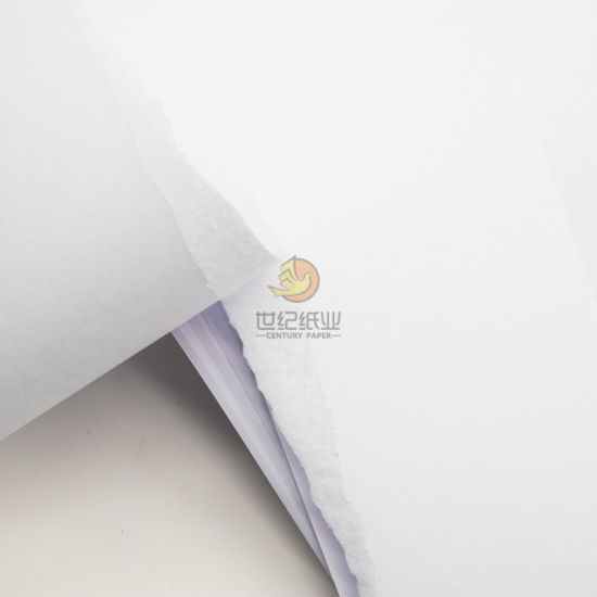120GSM Woodfree Offset Paper in Reels