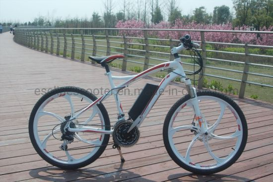 Worrior 26′′ MID Drive 250W & 350W MTB Ebike pictures & photos
