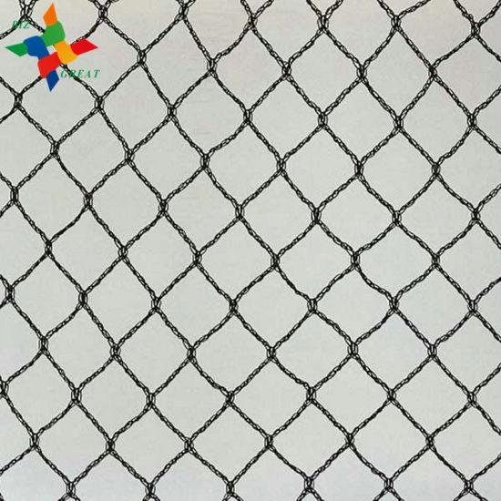 China Customizable Various Agricultural Anti Bird Netting