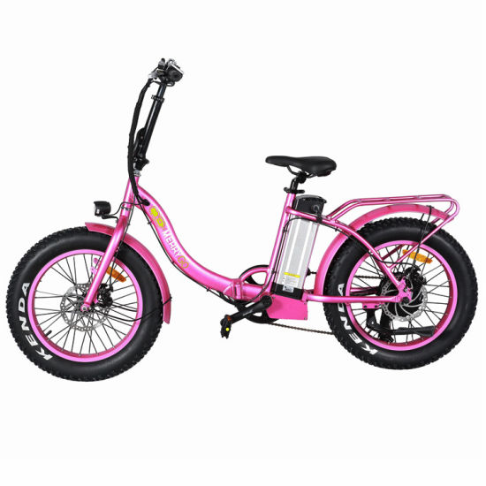 Best Price 48V 500W Folding Green City Electric Bike with En15194 pictures & photos