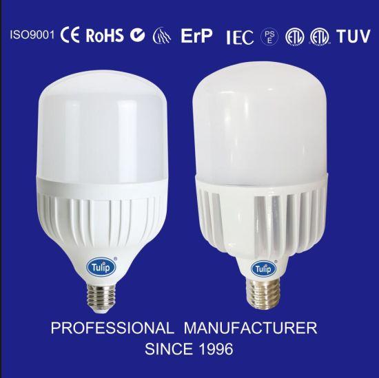 E27/E40 High Power SMD Aluminum LED Bulb with TUV Ce/RoHS 20W/30W/40W/50W/60W /80W/100W Ceiling Lamp LED Light Bulb