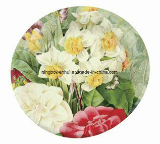 Round Custom Printed Disposable Party Paper Plate  sc 1 st  Ningbo Yinzhou Wenhui Paper Co. Ltd. & China Round Custom Printed Disposable Party Paper Plate - China ...