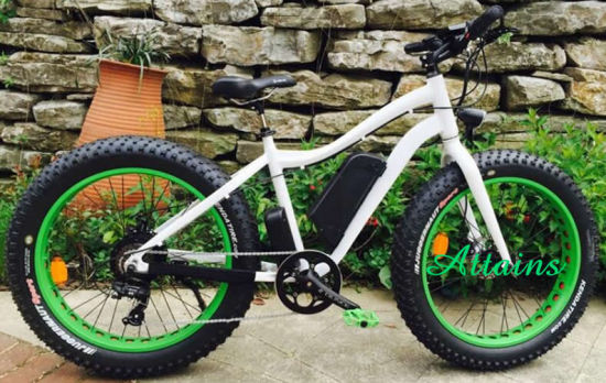 Fat Tire Dirt Snow Mountain Electric Bike with Pedal Assisted pictures & photos
