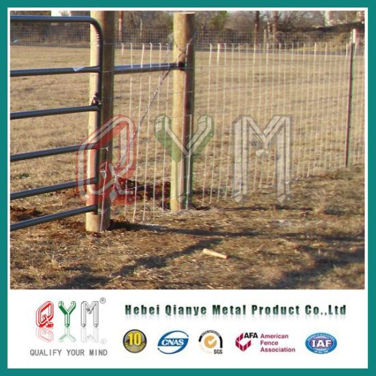 China Pig Wire Fence Lowes Hog Wire Farm Fencing/ Farm Field Fence ...