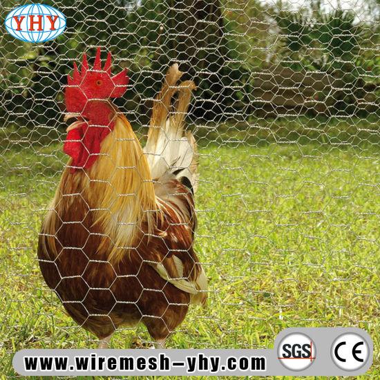 Electro Galvanized Hex Netting Chicken Wire Fence
