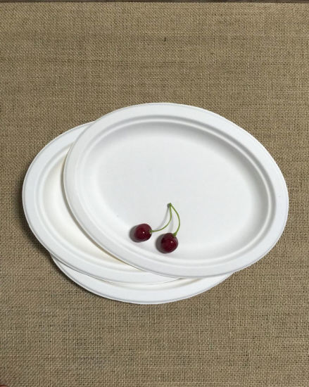 Disposable Composable Eco Friendly Oval Paper Plate & China Disposable Composable Eco Friendly Oval Paper Plate - China ...