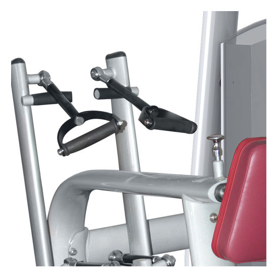 Bodystrong Fitness Equipment/Gym Equipment for Back Training (M5-1015) pictures & photos