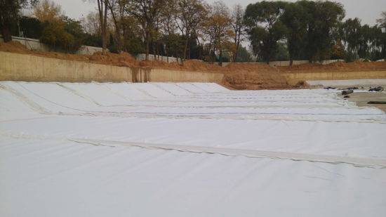 Geotextile Fabric Goemembrane Film for Construction pictures & photos
