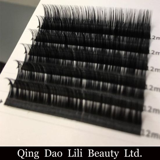 635bf049220 Lashes Extensions with Private Label and Extra Black Color Lashes pictures  & photos