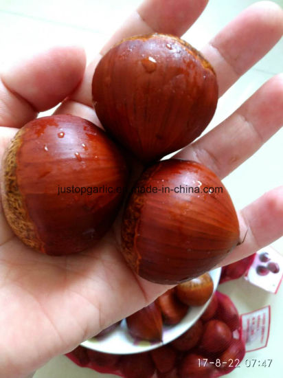 Fresh Chestnut (30-40, 40-50, 40-60, 50-60, 60-80, 80-100, 90-110) pictures & photos