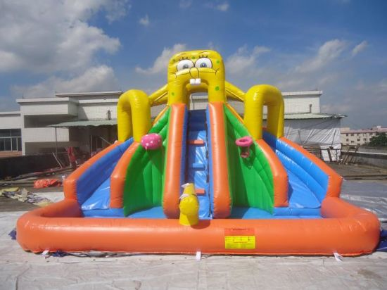 Inflatable Slide with Pool for Children pictures & photos