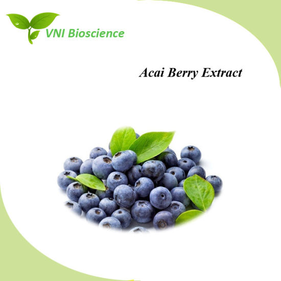 ISO Certified 100% Natural Acai Berry Extract with Improve Anemia pictures & photos