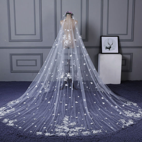 Flower Lace Tulle Comb Bridal Wedding Veils Ts5511