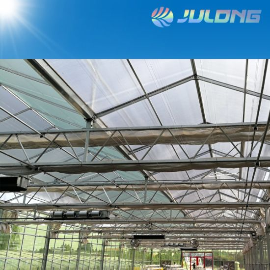 Sell 4 5 6 8 10 12 mm Tempered Venlo Type Glass Green House