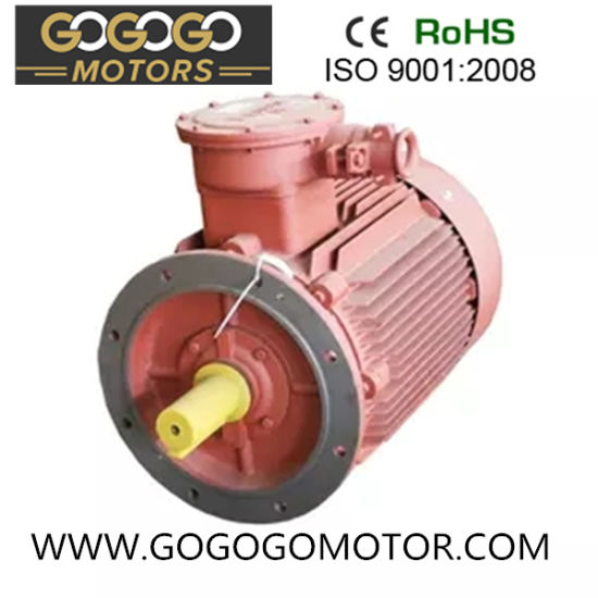 Y2-180m-4 30HP 22kw Three Phase Asynchronous Electric Motor with CE