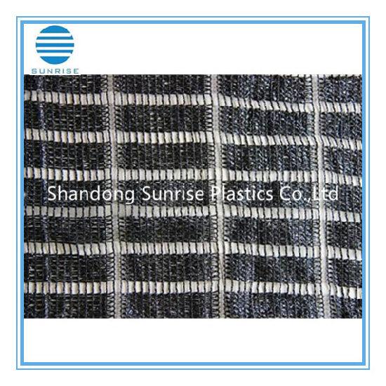 Shading Net/Plastic Net/PE Net/Sunshade Net/Shade Cloth