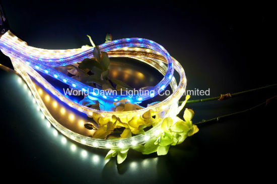 High Brightness LED High Voltage Rope Light with CE Approval