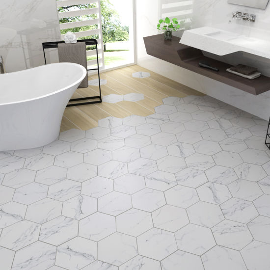 China Hexagon Wall Tile Flooring
