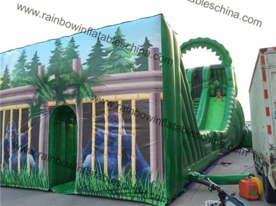 21X6X10m Green Color Jungle Giant Zip Line Inflatable Slide Suit for Adults and Kids Play pictures & photos