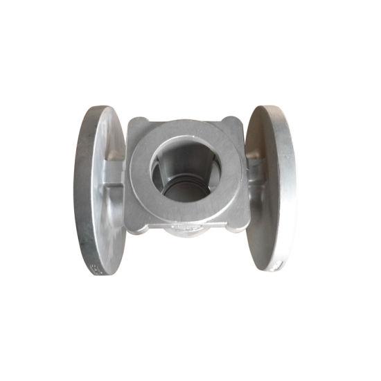 Densen Customized Polishing Treatment Duplex Stainless Steel Plug Valve Body Valve Castings