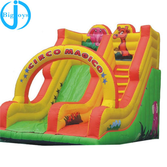 Professional Supplier Giant Inflatable Slide, Giant Inflatable Water Slide for Adult, Inflatable Jumping Slide pictures & photos