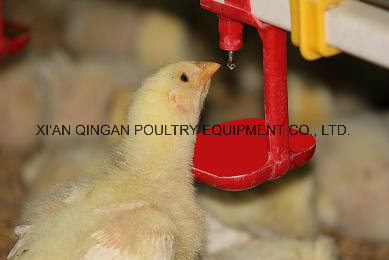 Automatic Chicken Nipple Drinker for Cage-Breeding