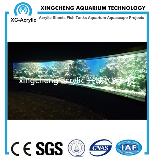 Acrylic Material Glass Sheet Aquarium Price pictures & photos