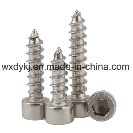 Stainless Steel Socket Head Self Tapping Cap Screw