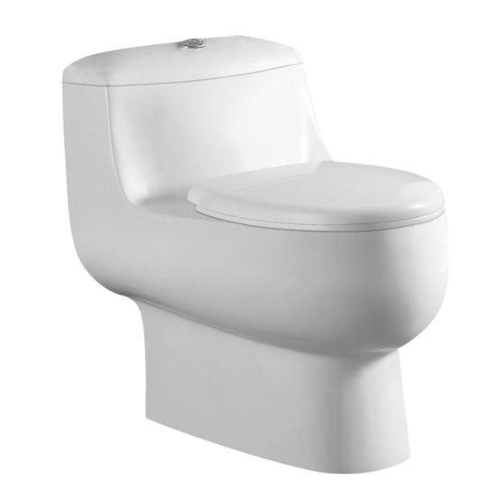 Siphonic One-Piece Toilet Seat CE-T1332