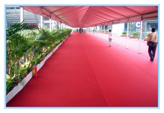 Plastic Film Plain Exhibition Carpet pictures & photos