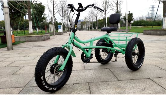 Wblddc 250W Brushless Motor Three Wheel (1906-6) Scooter 48 V 8.8 Ah Lithium Battery Factory Price Electric Tricycle