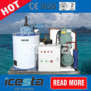 Prefabricated 5 Tons Flake Ice Machine Fixed in Container, Containerized Ice Plant for Fishery