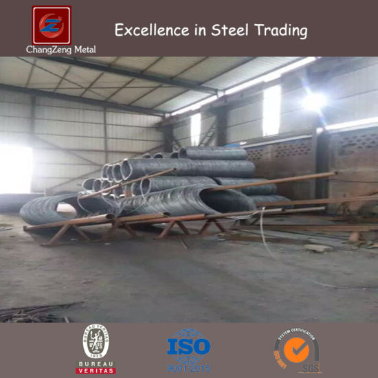 High Carbon Steel Wire Rod/ Deformed Bars (CZ-B23) pictures & photos