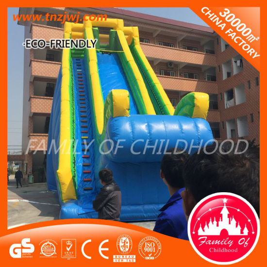 Jumping High Castle Theme Cheap Kids Inflatable Bouncer for Sale pictures & photos