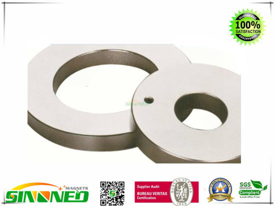 Strong Permanent Radially-Aligned Neodymium Magnets pictures & photos