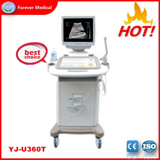 Medical Device Trolley B/W Ultrasound Scanner for Pregnant