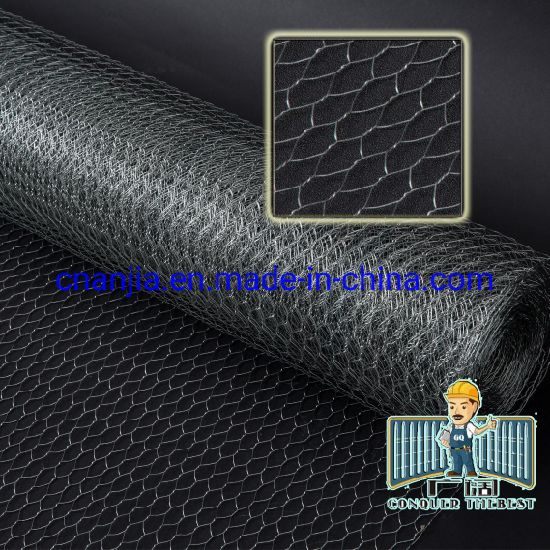 Hexagonal Gabion Box with PVC Coated (CE and SGS) pictures & photos