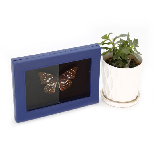 High Quality Anti-Reflection Glass for Photo Frame