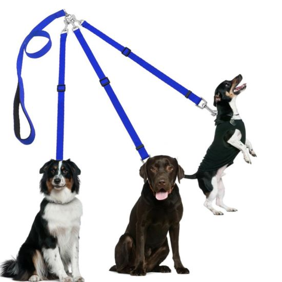 Dogs Leash Nylon Braided Rope Three Way No Tangle Couplers Pet Leads 1 Leash for 3 Dog Heavy Duty for Small Medium Large Pet pictures & photos