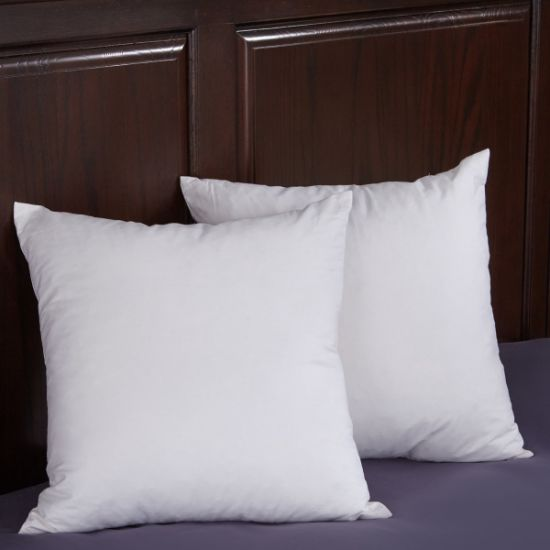 China Popular Cheap Down Cushion Insert China Cushion Insert Best Cheap Down Pillow Inserts